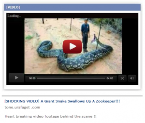 facebook-scam_snake_eats_zookeeper