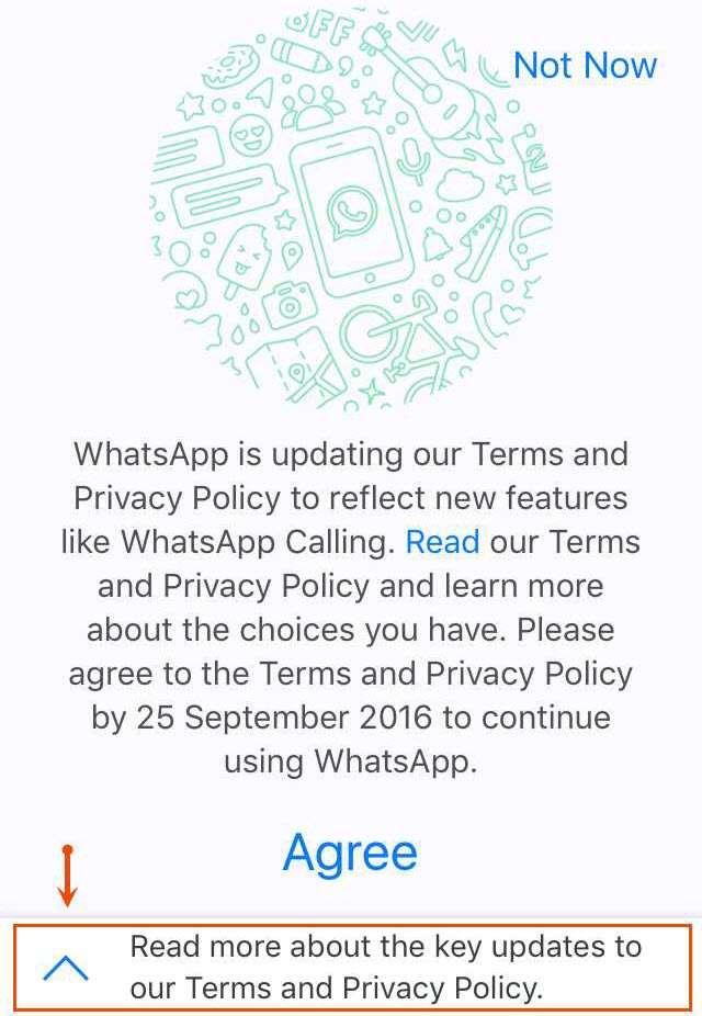 WhatsApp_sharing_phone_number_2