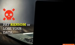 5-compelling-reasons-not-pay-ransomware-attack